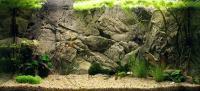 Фоны для аквариума